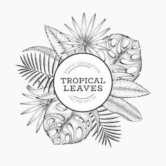 Diseño de banner de plantas tropicales. dibujado a mano ilustración de hojas exóticas de verano tropical.