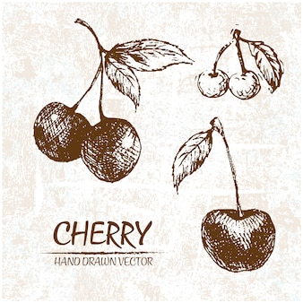Diseño de cerezas dibujado a mano