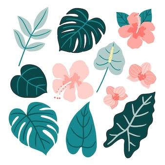 Diseño de colección de flores y hojas tropicales.