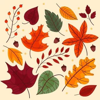 Diseño de colección de hojas de otoño.
