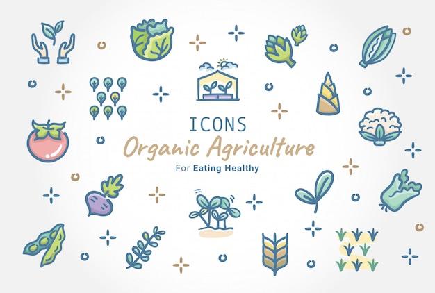 Diseño de colección de iconos de agricultura orgánica doodle