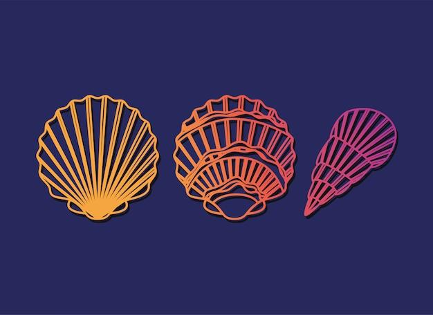 Diseño conjunto de iconos de tres conchas de mar