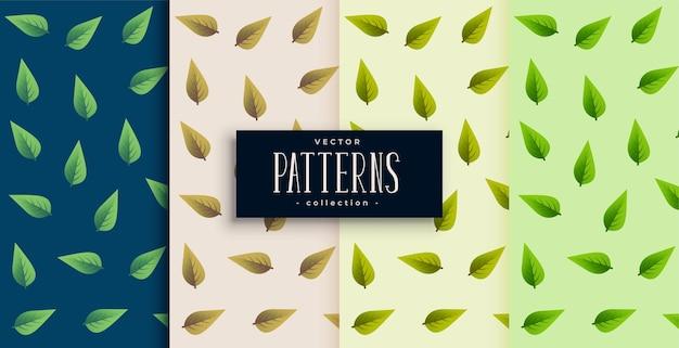 Diseño de conjunto de patrones sin fisuras de hojas verdes realistas