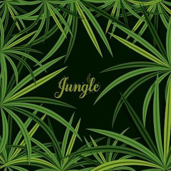 Diseño de la selva