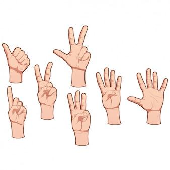 Diseño de manos humanas