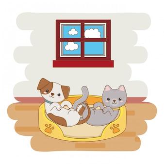Diseño de dibujos animados de perros y gatos