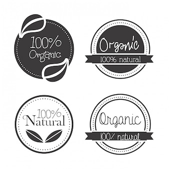 Diseño ecológico sobre fondo blanco ilustración vectorial