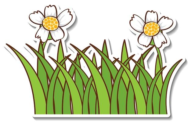 Diseño de etiqueta con flor de hierba aislado