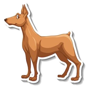 Diseño de etiqueta con perro pinscher miniatura aislado