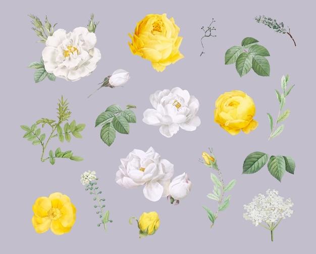 Diseño floral de fondo