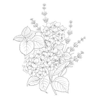 Diseño floral de lavanda y hortensia aislado