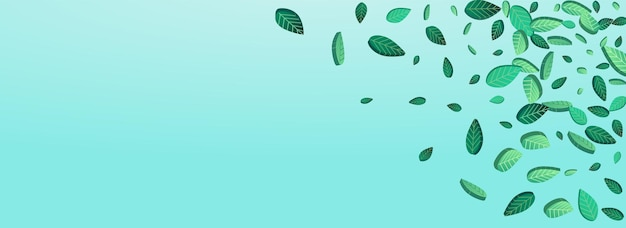 Diseño de fondo azul panorámico de vector de desenfoque de hojas de menta. telón de fondo de follaje de bosque. plantilla realista de verdes verdes. patrón de hojas de té.