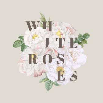 Diseño de fondo de rosas blancas