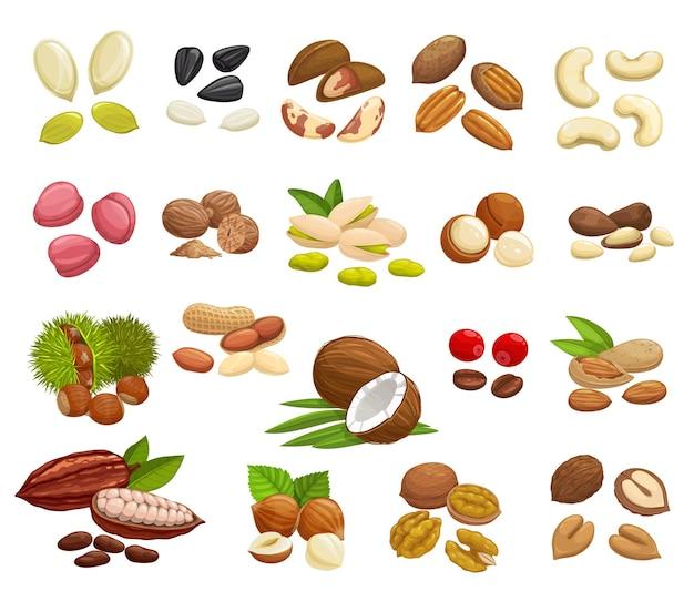 Diseño de frutos secos, frijoles y semillas de súper alimentos.