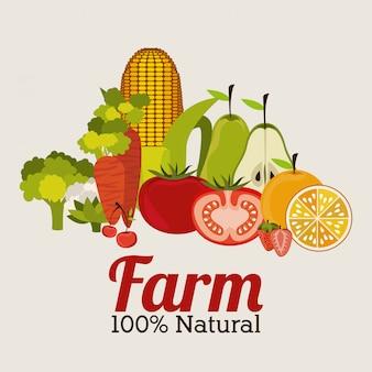 Diseño de la granja