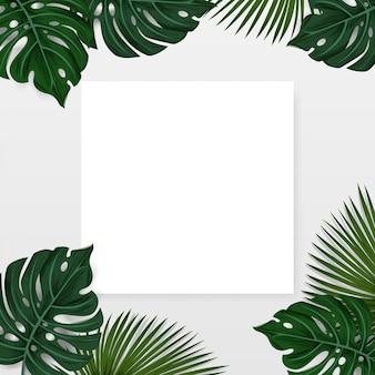 Diseño, hojas de palmeras tropicales de fondo con nota de tarjeta de papel blanco