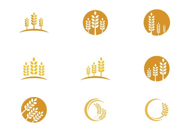 Diseño de icono de vector de plantilla de logotipo de trigo de agricultura