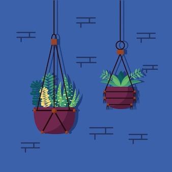 Diseño de interiores de plantas decorativas