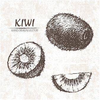 Diseño de kiwi dibujado a mano