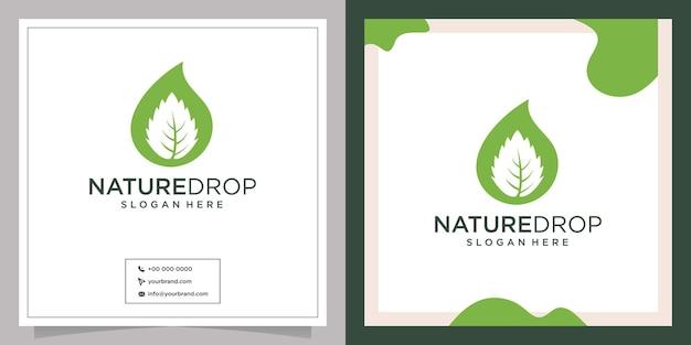 Diseño de logotipo de hoja de olivo de gota de naturaleza