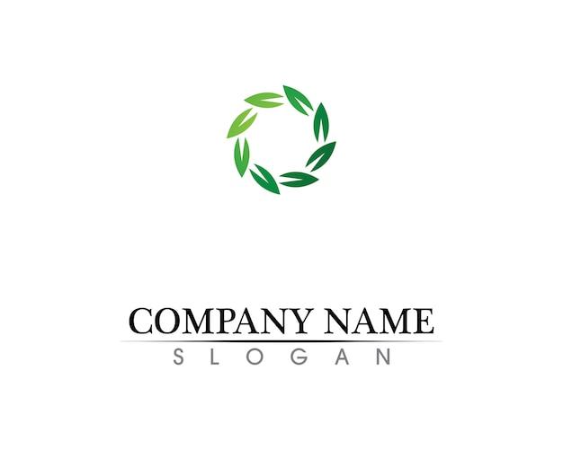 Diseño del logotipo del vector de la hoja del árbol, concepto respetuoso del medio ambiente.