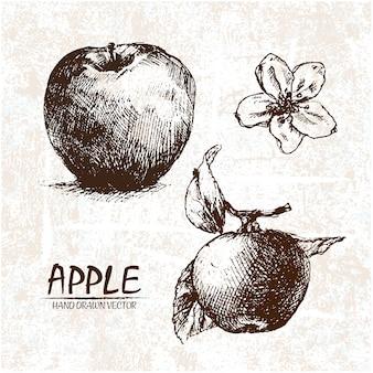 Diseño de manzana dibujada a mano