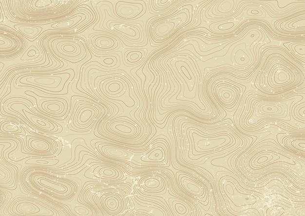 Diseño de mapa topográfico de estilo vintage