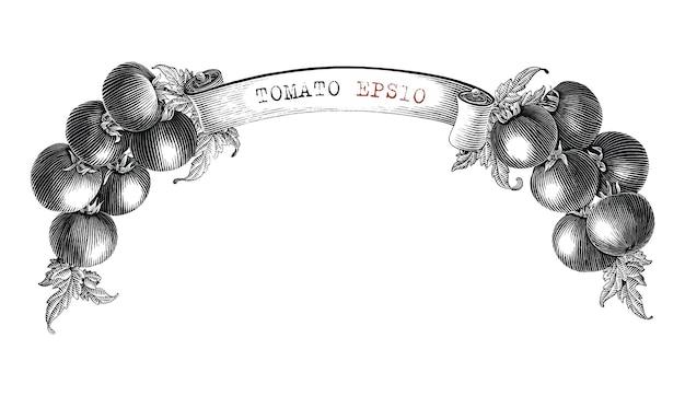 Diseño de marca de tomate para la etiqueta del producto dibujar a mano estilo de grabado vintage imágenes prediseñadas en blanco y negro aislado sobre fondo blanco