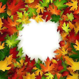 Diseño del marco del vector con las hojas de otoño coloridas, fondo natural