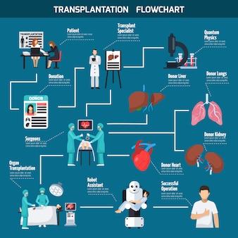 Diseño de organigrama de trasplante