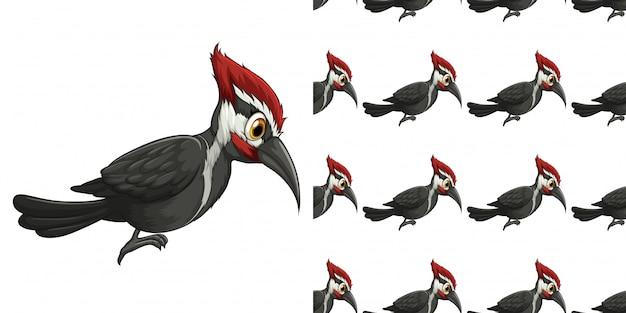 Diseño con patrón lindo pájaro carpintero