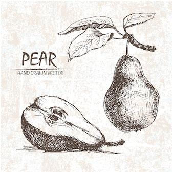 Diseño de pera dibujada a mano