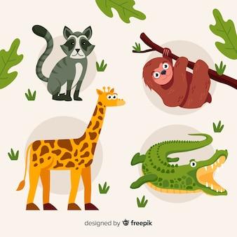 Diseño plano de colección de animales tropicales