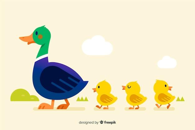 Diseño plano madre pato y patitos