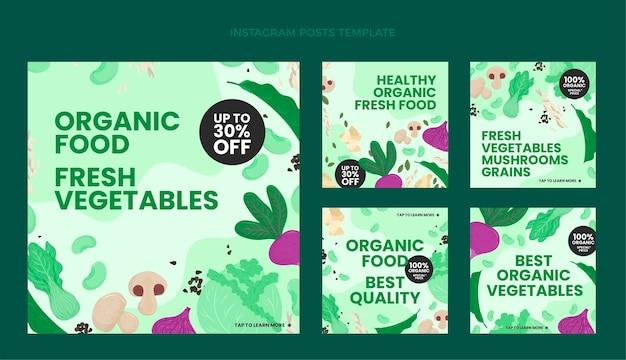 Diseño plano de publicación de alimentos ig
