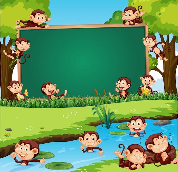 Diseño de plantilla de borde con monos lindos en el parque