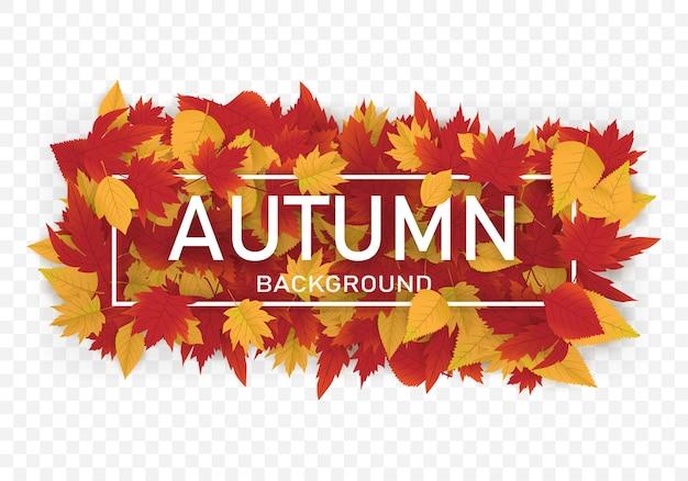Diseño de plantilla de fondo de otoño con hojas de arce