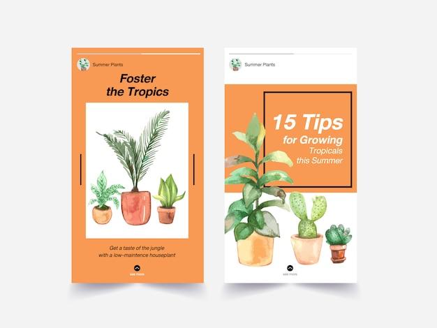 Diseño de plantilla con plantas de verano y plantas de interior para redes sociales, internet y publicidad de ilustración de acuarela