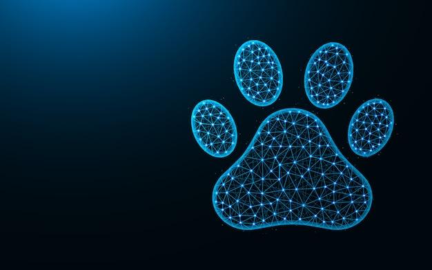 Diseño de poli baja huellas de mascotas, imagen geométrica abstracta de pata de animal de gato y perro, malla de alambre de zoológico ilustración de vector poligonal hecha de puntos y líneas