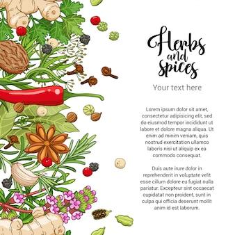 Diseño de tarjeta de comida con especias y hierbas