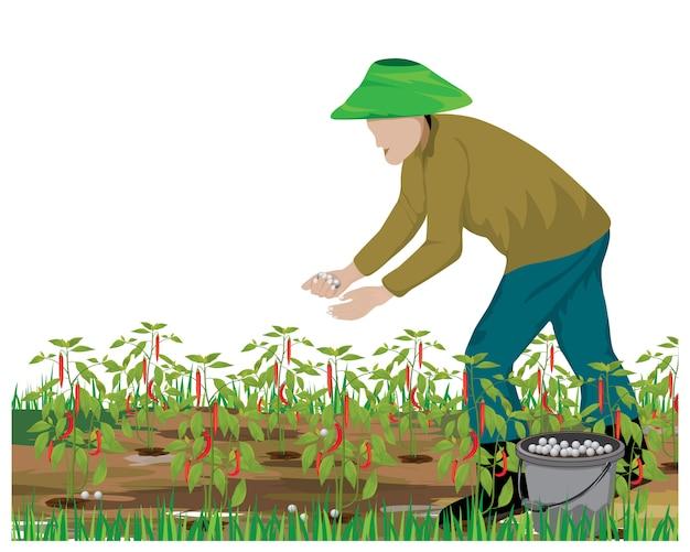 Diseño de vector de planta de chile de estiércol agrícola