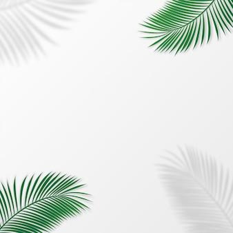 Disposición creativa hecha de hojas tropicales coloridas en el fondo blanco.