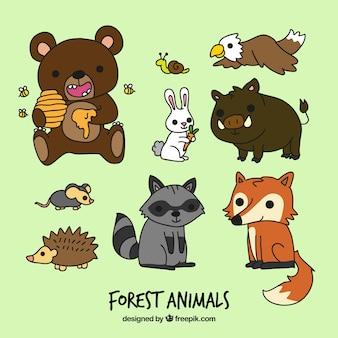 Divertidos animales del bosque de dibujos animados
