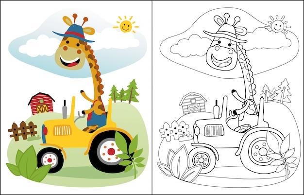 Divertidos dibujos animados de jirafa en tractor