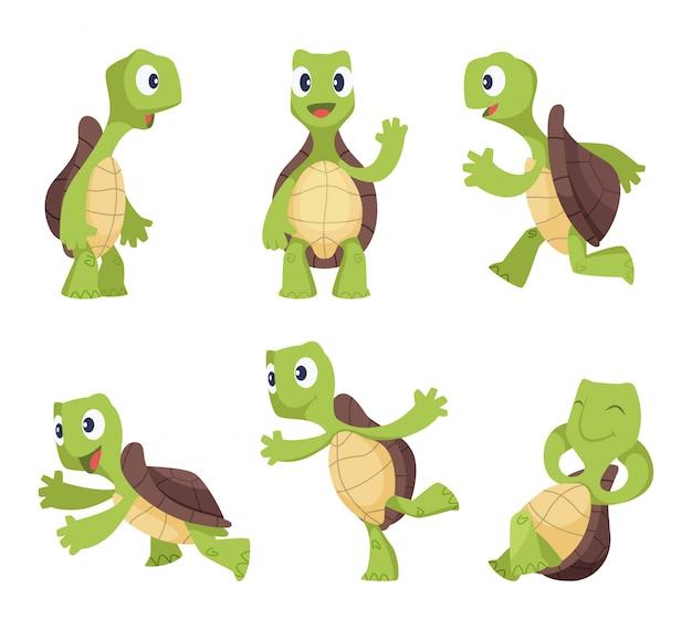 Divertidos personajes de dibujos animados de tortugas en varias poses