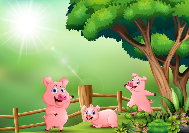 Divertidos tres cerdos jugando en la naturaleza