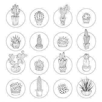 Doodle cactus y conjunto de iconos suculentos. varios cactus en macetas y tazas. iconos lineales aislados sobre fondo blanco. formas redondas.