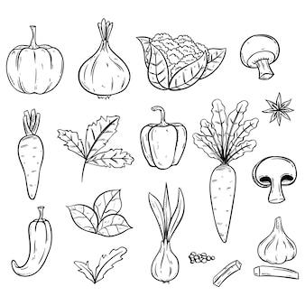 Doodle ilustración de verduras frescas alimentos orgánicos