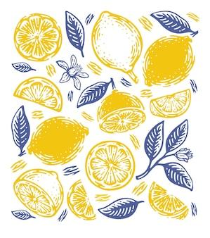 Doodle limón dibujado a mano.