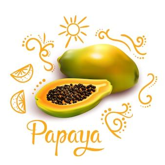 Doodles alrededor de la composición de la papaya